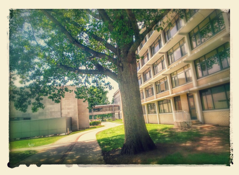 20140630_124120_744-EFFECTS