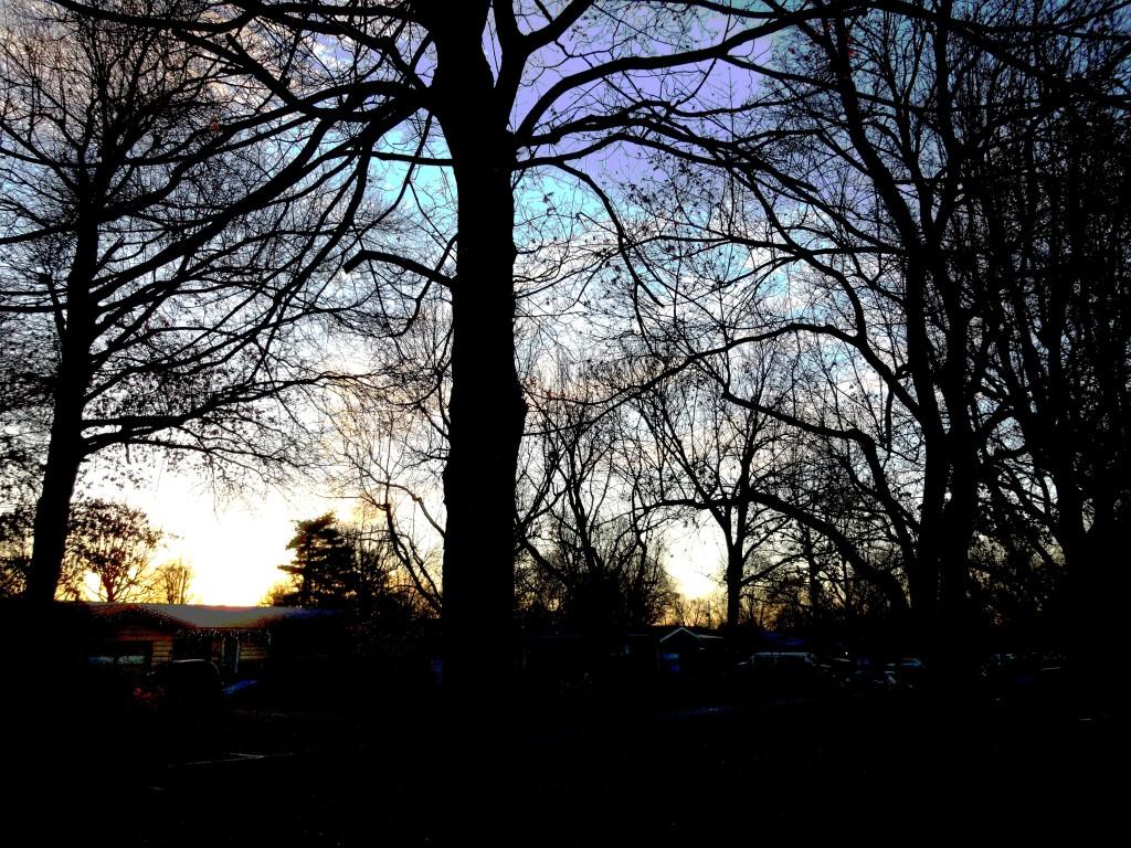 2014-01-01 sun 3